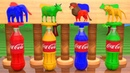 Learn Colors With Coca Cola Liquid Bottles Shadow Animals Matching Wi Wooden Animal Toy Fun For Kids