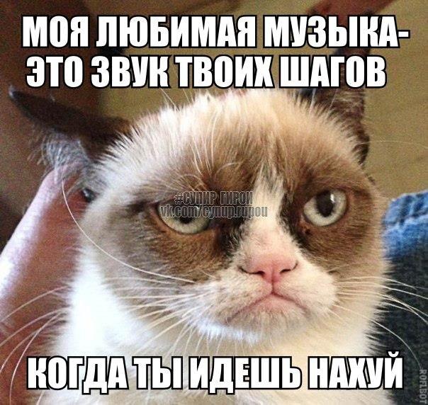 Россия за восстановление единого политического пространства на Донбассе, - Путин - Цензор.НЕТ 1640
