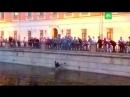 ОМОН вытащил из канала Грибоедова болельщицу