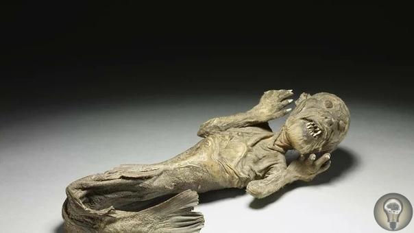 Эта довольно необычная фигура русалки может стать причиной кошмара, если вы достаточно долго на нее будете смотреть