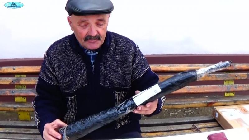 Саженцы винограда из Польши. Посылка