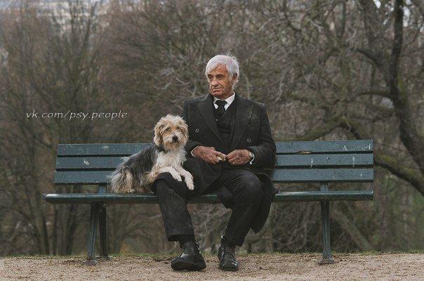 """Умер человек. Его пес рядом лег и тоже умер. И вот душа человека стоит перед вратами с надписью """"Рай"""" и рядом душа собаки. На вратах надпись: """"с собаками вход воспрещен!"""". Не вошел человек в эти врата, прошел мимо. Идут они по дороге, вторые врата, на которых ничего не написано, только рядом старец сидит. — Простите, уважаемый... — Петр я. — А что за этими воротами? — Рай. — А с собакой можно? — Конечно! — А там, раньше, что за врата? — В Ад. До Рая доходят только те, кто…"""