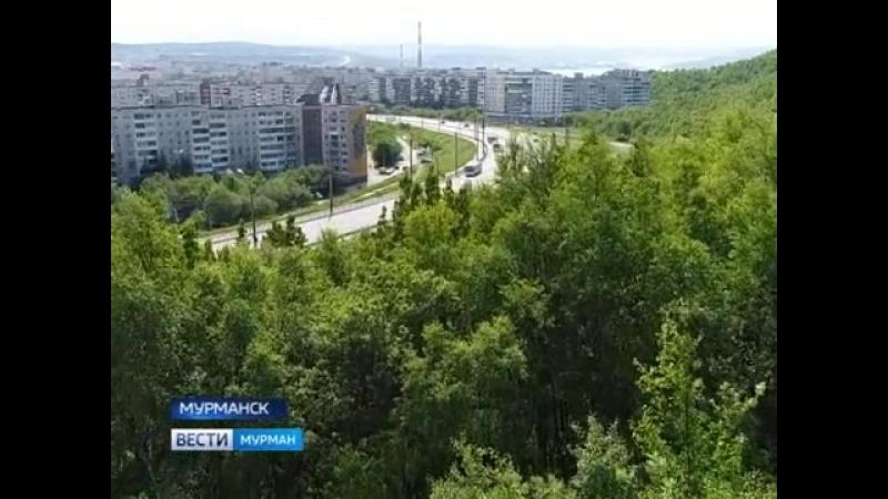 Раскаленный июль в Мурманской области.