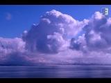 Electro Esthetica - Amnesia Ibiza (Radio Edit) (Official Music Video)
