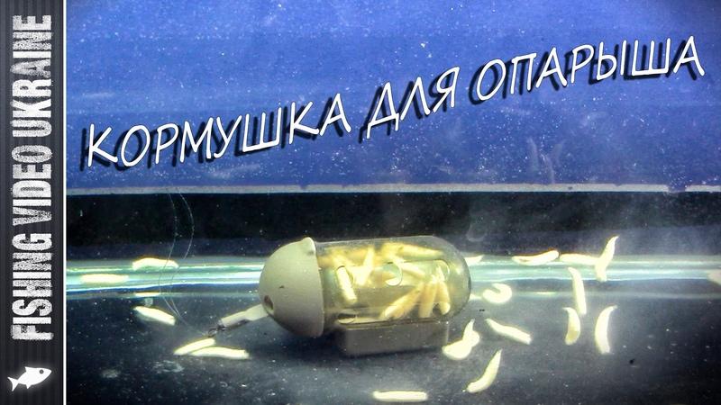 Как работает кормушка для опарыша?   Неожиданность   FishingVideoUkraine   1080 p