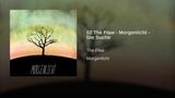 02 The Flaw - Morgenlicht - Die Suche