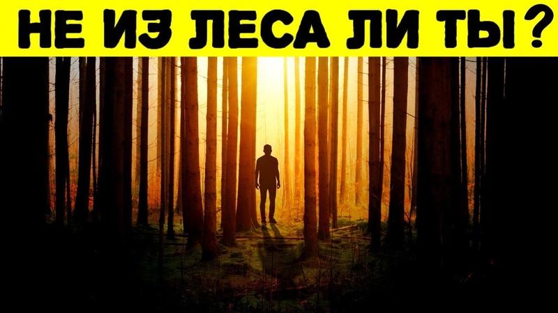 ТЕСТ НА УМ! Если ты НЕ ответишь хотя бы на 10 вопросов, то ты из леса!