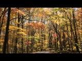 Hanski - Chasing Shadows (Santerna Remix)