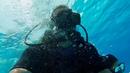 Red Sea 2018 Diving Sharm El Sheikh Tiran island