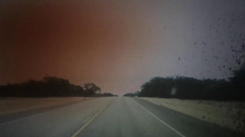Pat Moon Smoke Dust