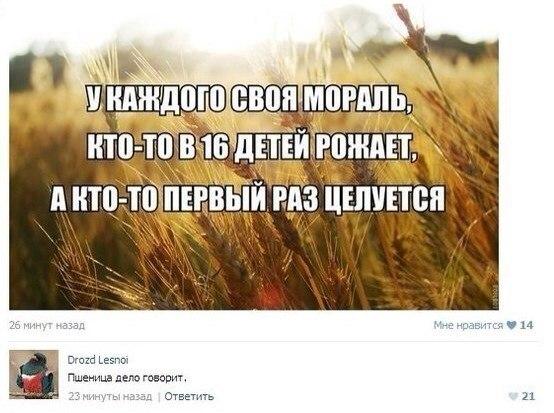 http://cs313528.vk.me/v313528126/906d/To_iCviKjqc.jpg