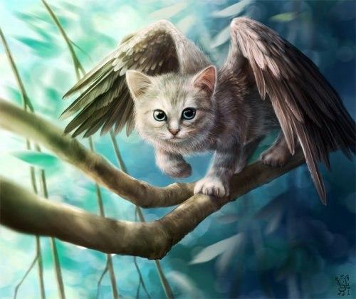 Картинки на магическую тематику - Страница 7 Zae_roCQty0