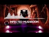 Infected Mushroom - Walking on the moon