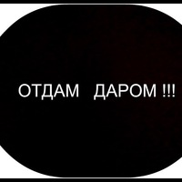 ДАР ОБУВЬ - Деловая Тюмень - Адреса, Организации