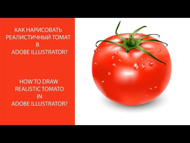 Как Нарисовать Реалистичный ТОМАТ в adobe ILLUSTRATOR? How to draw Realistic TOMATO