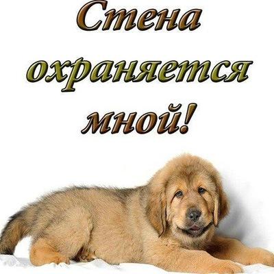 Татьяна Ахромеева-Садырева, 4 августа 1976, Новосибирск, id120816579