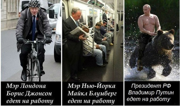 Фоподборка приколов с Путиным 41 фото  Триникси