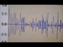 Голоса привидений / Ghost voices. 11 min 17-09-2018 9.30Л/L /037