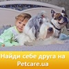 Продажа домашних животных Украина