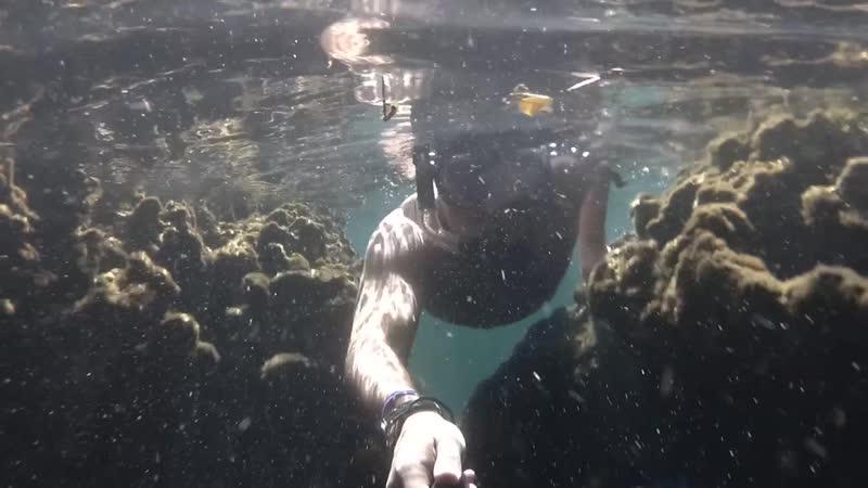 Рыбья пещера mp4