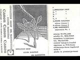 Silver Baracudas - Silver Forest (1985 Yugoslav Industrial ElectroAvant Noise Jazz )