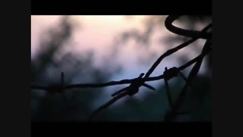 Андрей Заря - А он все также на корточках а в зубах папиросочка (2) (online-video-cutter.com)