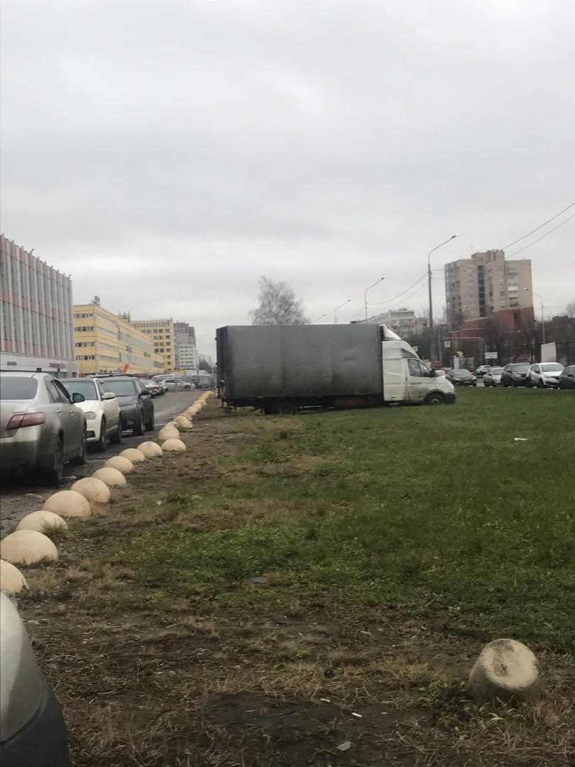 Бедолага сел на газоне на Софийской 8. Роет землю.