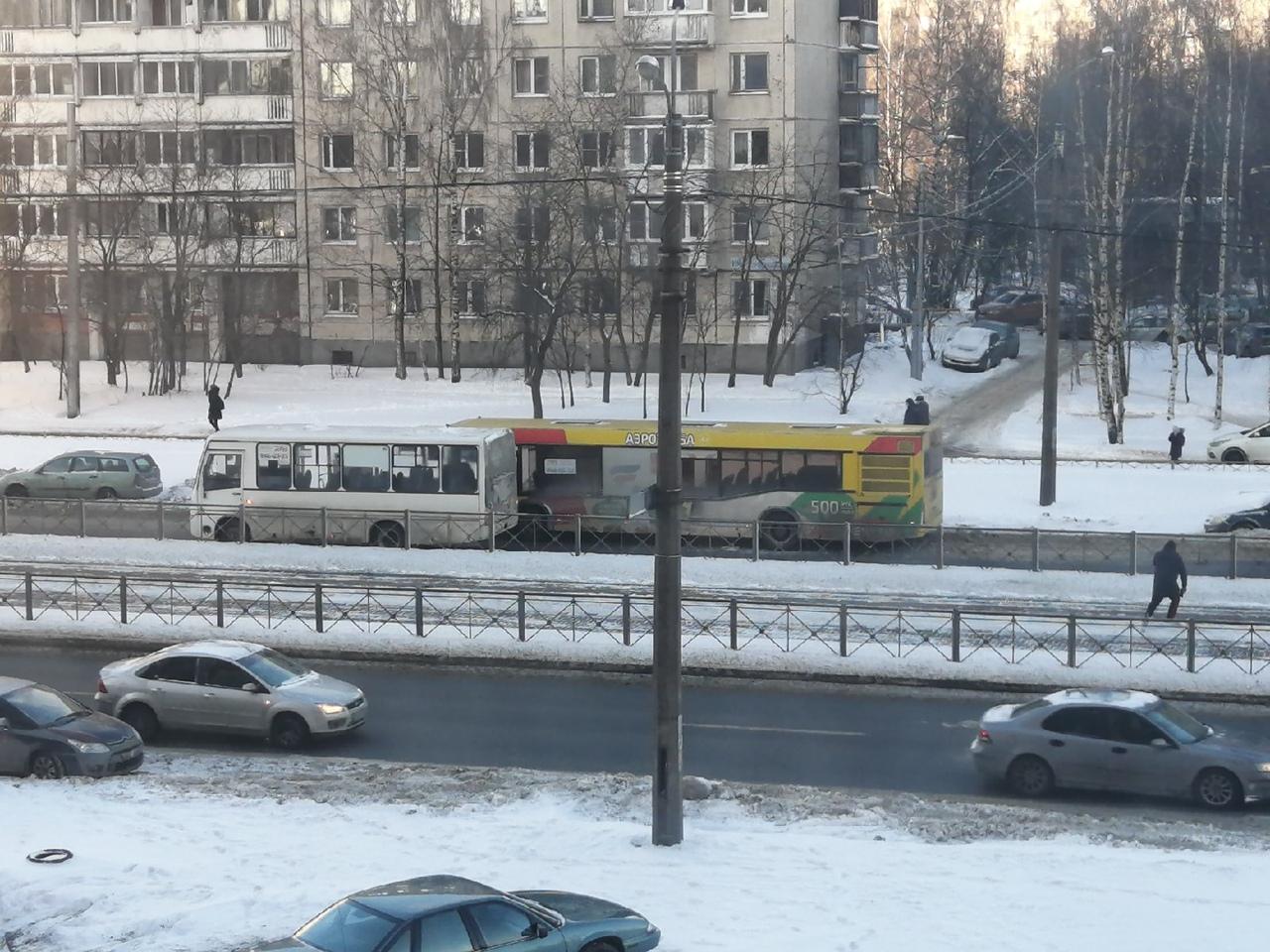 Напротив дома 106к1 по проспекту Просвещения общественный транспорт занял всю проезжую часть.