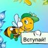 """Частный детский сад  """"Пчёлка"""" Челябинск"""
