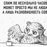 фотография Светлана Зеленкова