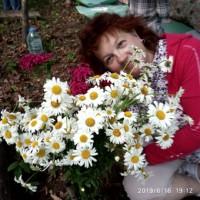ЕкатеринаДанилова