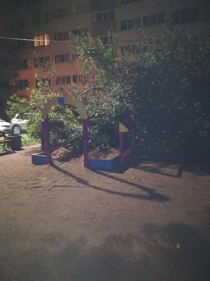 На улице Партизана-Германа 23 упавшее дерево лежит уже неделю. Звонили в 004. Ничего не происходит, ...