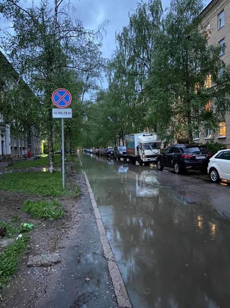 На Сестрорецкой улице движение полностью остановлено, дерево полностью преградило дорогу и оборвало ...