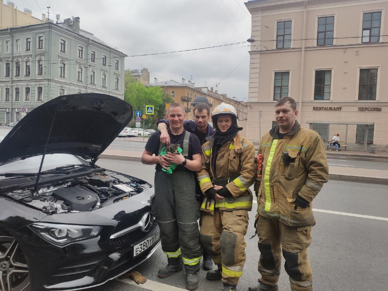 Вчера на Измайловском проспекте под капот заскочил котёнок и забился под защиту на дно машины. Вызва...