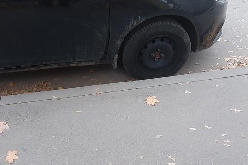 За неделю два раза скрысили колпаки с машины на Искровском пр. 30 у поликлиники. Совсем дела плохи?
