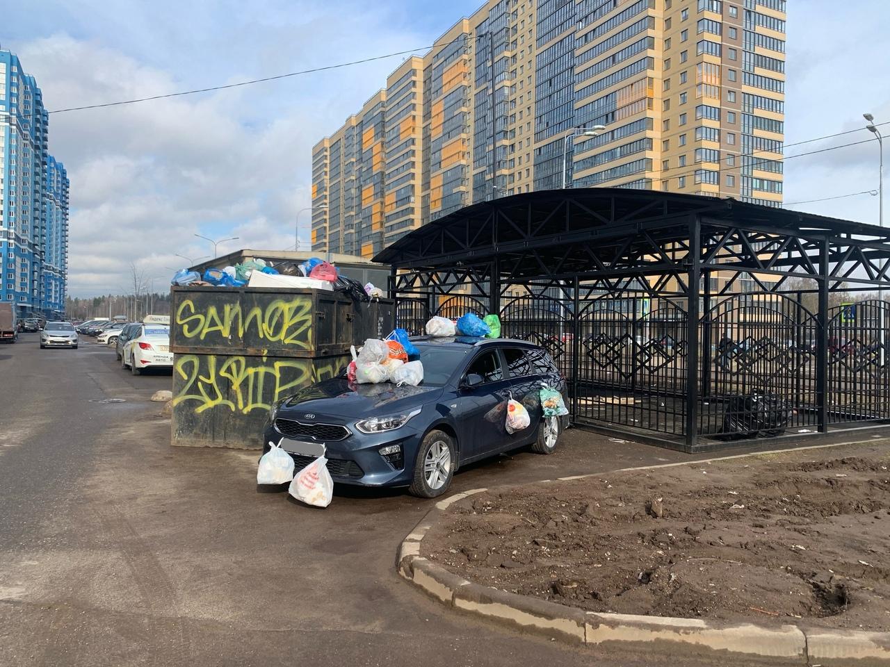 На Заречной 19к1 на Парнасе припарковавшейся у мусорки машине досталось от жителей ближайших домов.