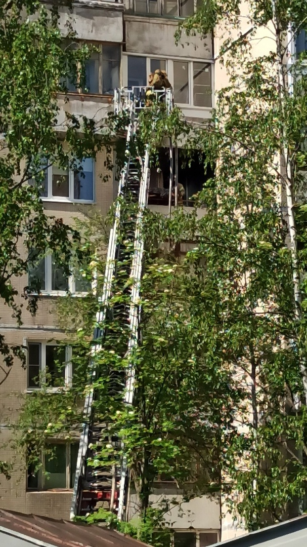 28 мая в 14:51 на телефон МЧС поступило сообщение о пожаре по адресу: Загребский бульвар дом 17 корп...