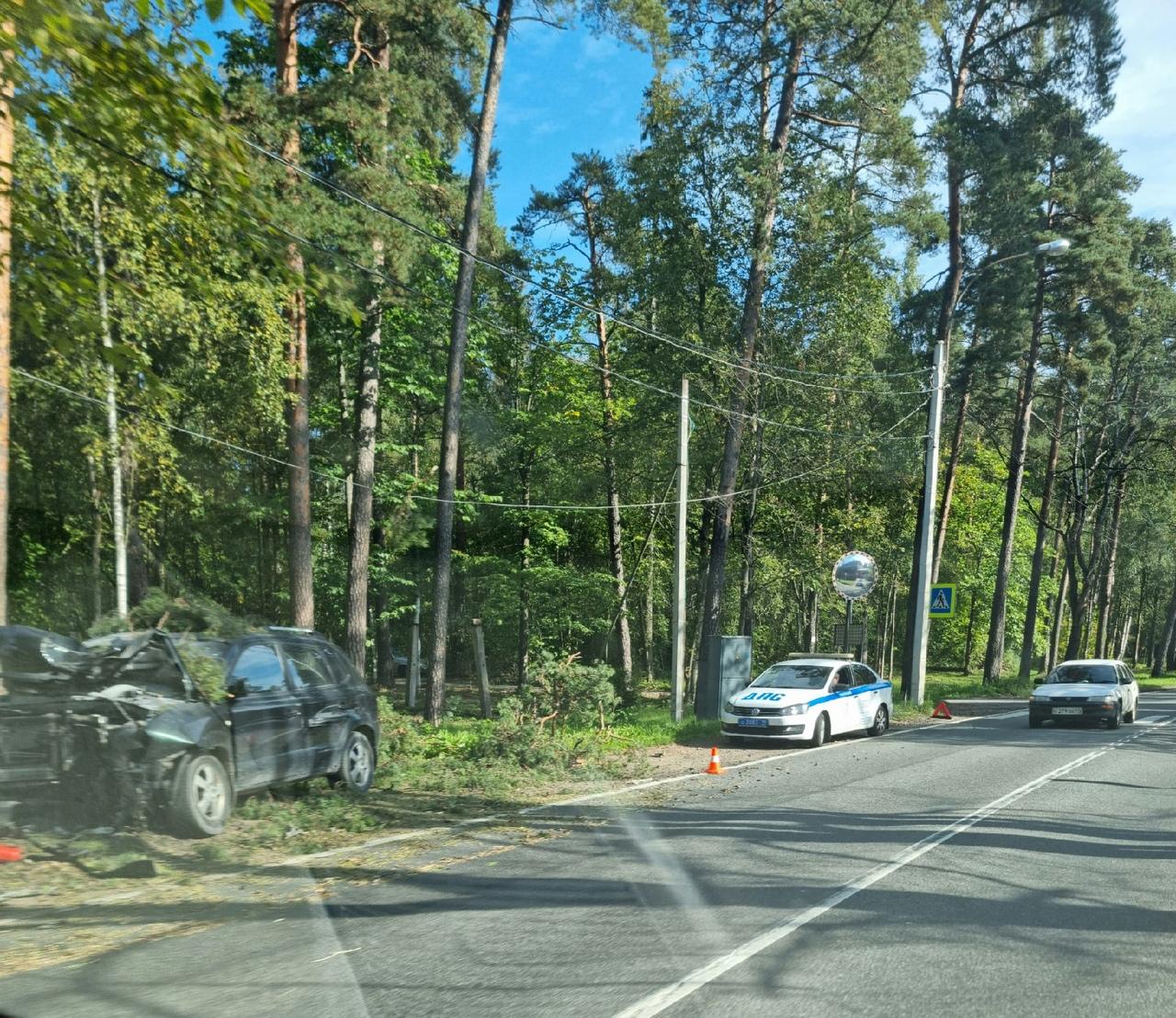 Или водителю стало плохо, или по какой другой причине он совершил жёсткий контакт с деревом на Прим...