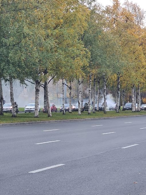 3 тачки в тотал на перекрестке Светлановского и Луначарского