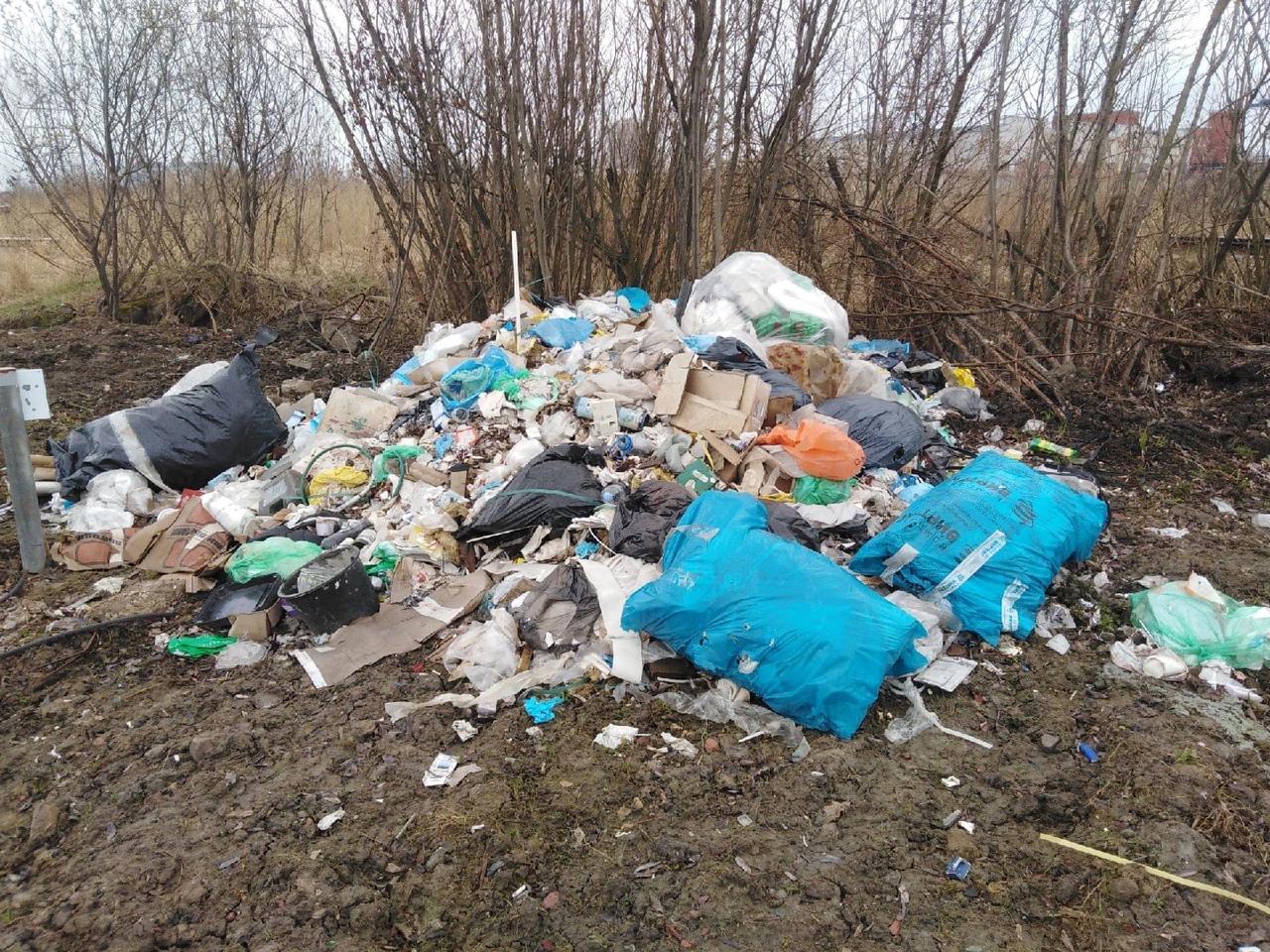 В Невском районе замечена свежая и огромная свалка мусора вдоль Приневской улицы (по обе стороны). ...
