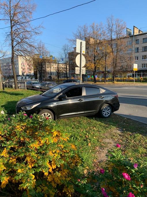 3 октября в 16.00 час. На Ланском шоссе,д 8., были задержаны очевидцами и переданы сотрудникам ДПС ...