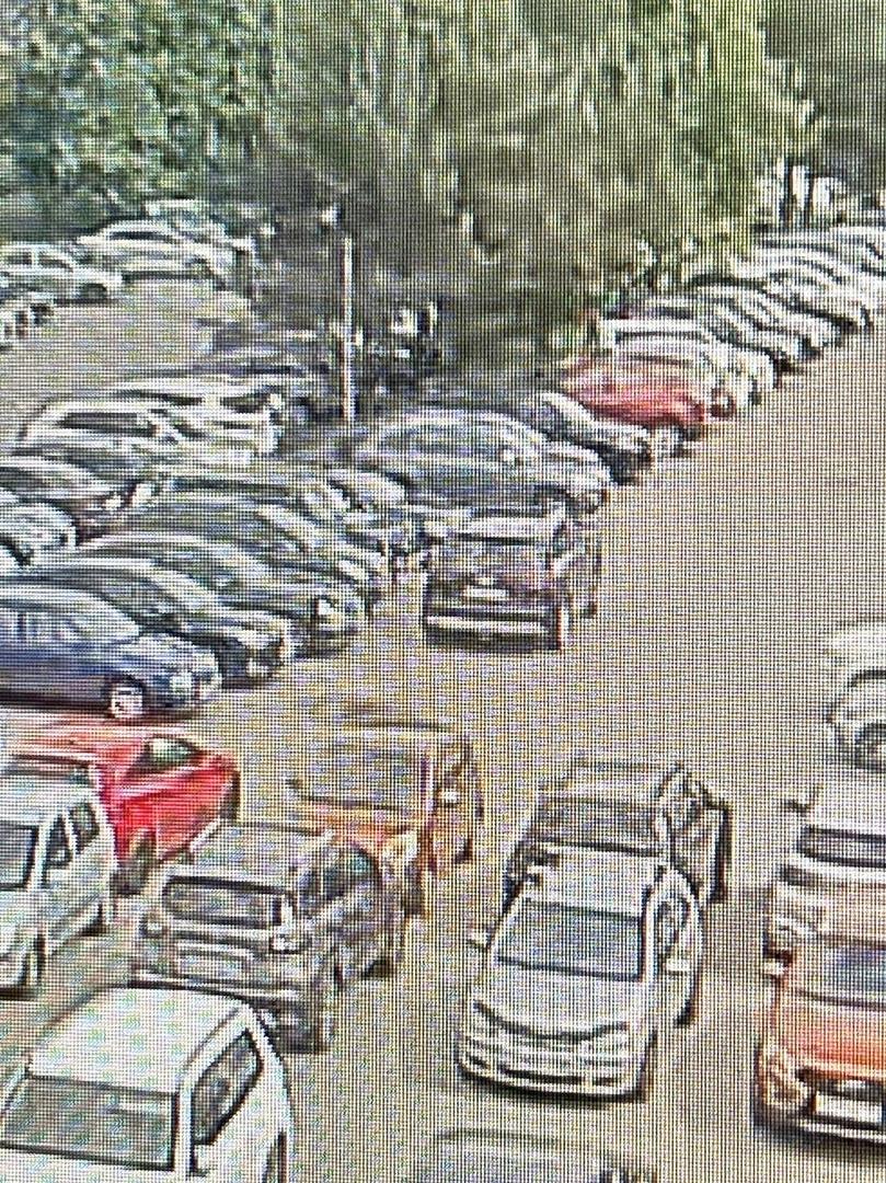 Вчера 15 июня в д. Новое Девяткино на Главной улице 104 в промежутке с 14-00 до 15-00 на парковке за...