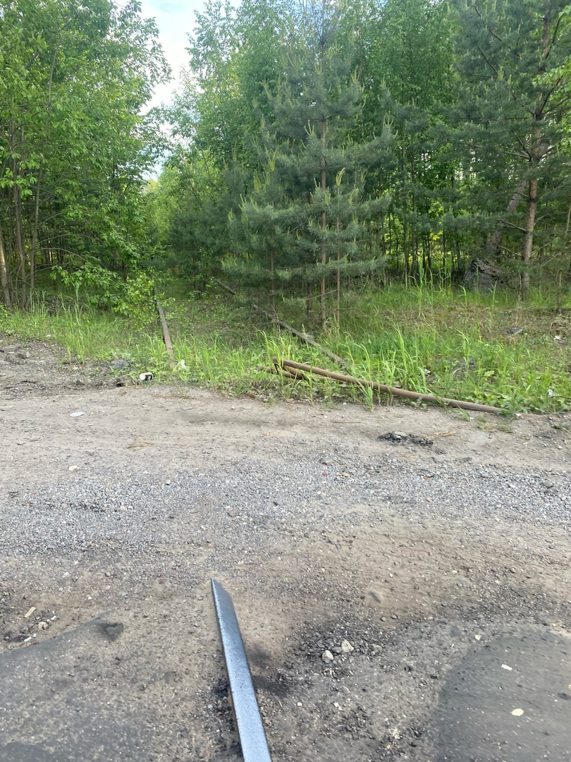 В посёлке Большая Ижора находится уже несколько лет недействующие железнодорожные пути. От ОЖД ожид...