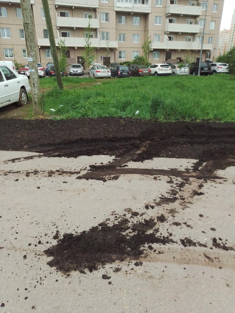 Был хороший свежепосаженный газончик, но водителю Ровера некуда было поставить машину.