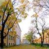 Школа 197 (Санкт-Петербург)