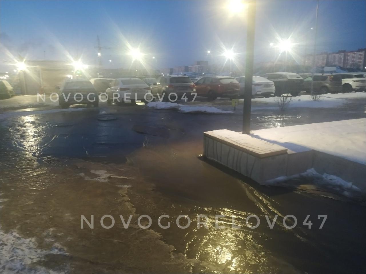 В Новогорелово на бульваре Чугунова произошел прорыв трубы, холодная вода залила часть бульвара, пер...