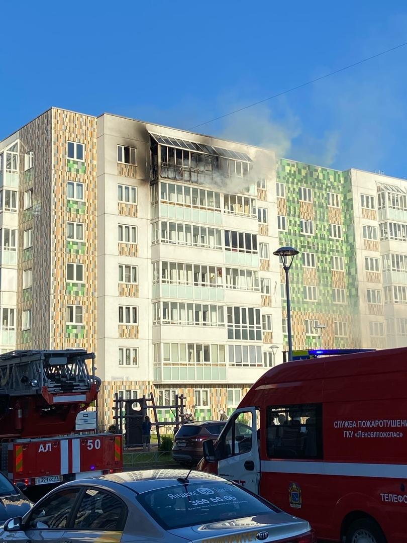 Пожар в Янино, на Голландской 3