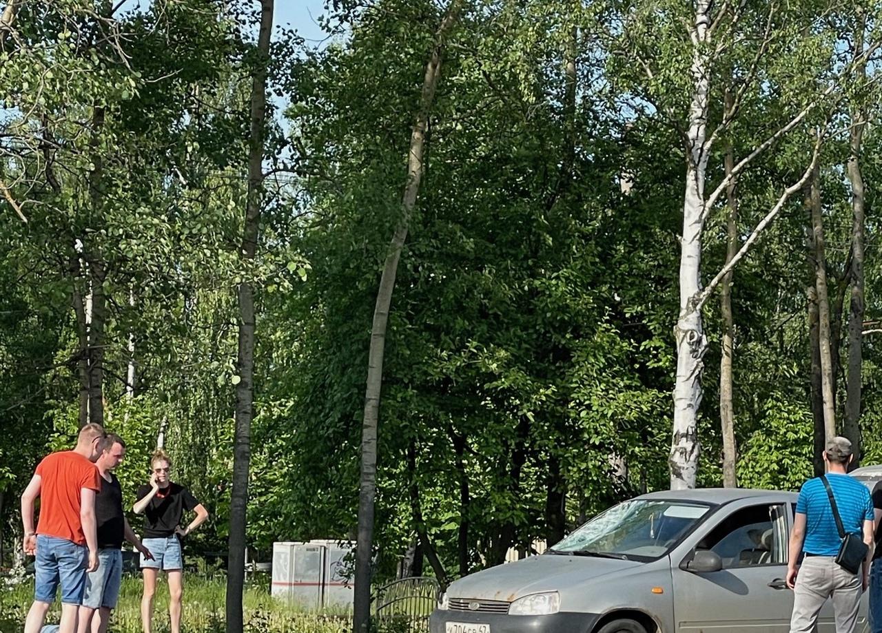 На пешеходном переходе на Лахтинском 85 сбили двух пешеходов