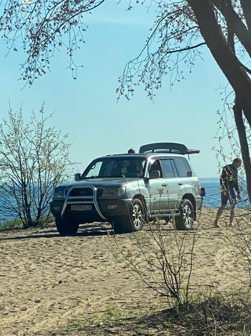 Сегодня на Приморском шоссе (недалеко от детского пляжа, что на финском заливе) отдыхающие наблюдали...