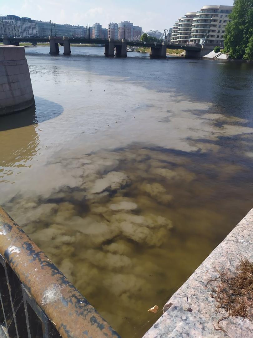 Земснарядом чистят речку Карповку